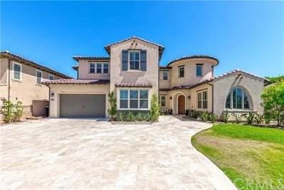 Brea Single Family Home For Sale: 2211 E Santa Paula Drive