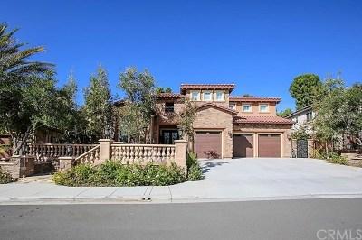 Yorba Linda Single Family Home For Sale: 20205 Umbria Way