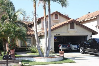 Chino Hills Single Family Home For Sale: 6277 Sunny Meadow Lane