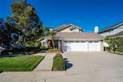 Placentia Single Family Home For Sale: 901 Rashford Drive