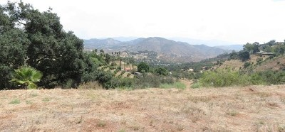 Fallbrook Residential Lots & Land For Sale: 1330 Camino Zara