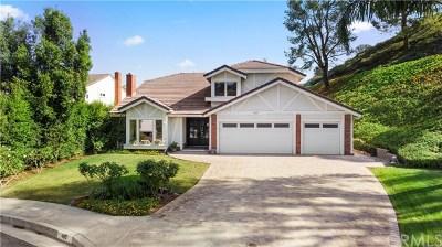 Anaheim Hills Single Family Home For Sale: 480 S Sleepy Meadow Lane