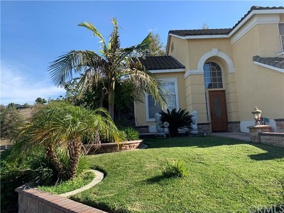 Chino Hills Single Family Home For Sale: 2069 Paseo Grande