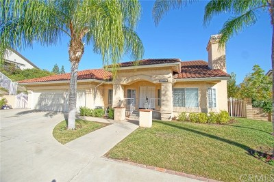 Yorba Linda Single Family Home For Sale: 24597 Paseo De Toronto