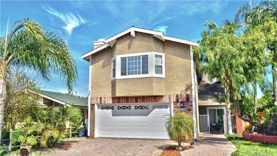 Mission Viejo Single Family Home For Sale: 24722 Tabuenca