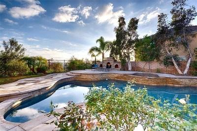Yorba Linda Single Family Home For Sale: 3953 Sage Ridge Drive