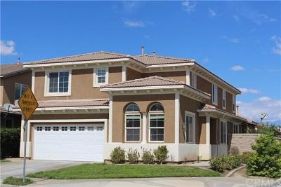 Hemet Single Family Home For Sale: 3170 Oregano Way
