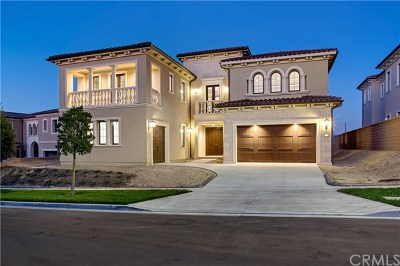 Irvine Single Family Home For Sale: 126 Scenic Crest