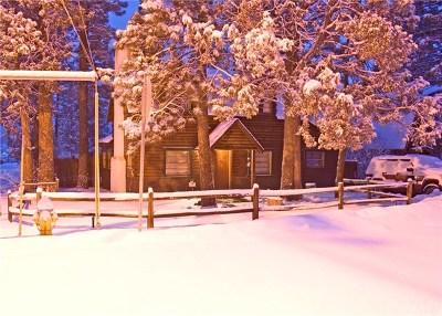 Big Bear Single Family Home For Sale: 301 E Barker Boulevard
