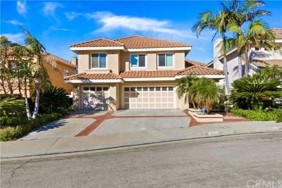 Orange Single Family Home For Sale: 6829 E Canyon Ridge