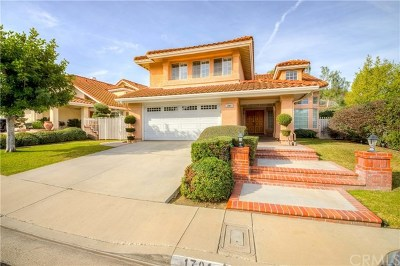 Fullerton Single Family Home For Sale: 1701 Chantilly Lane