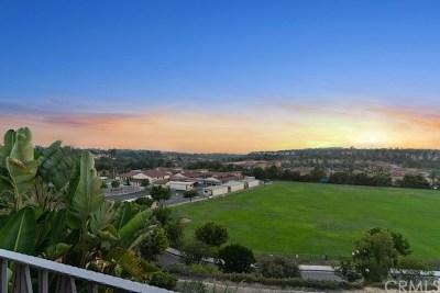 Orange County Rental For Rent: 33 Marisol