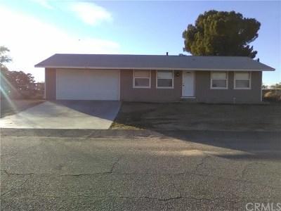 Lancaster Single Family Home For Sale: 40975 172nd St E