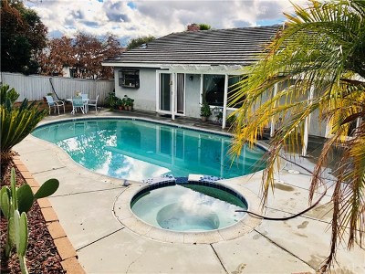 Lake Elsinore Single Family Home For Sale: 3710 Colonial Circle