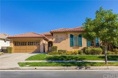 Corona Single Family Home For Sale: 9138 Filaree Court