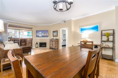 Orange County Rental For Rent: 312 Villa Point Drive