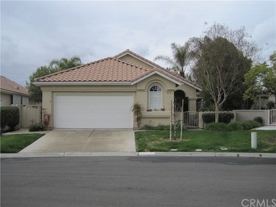 Murrieta Single Family Home For Sale: 40583 Via Jalapa