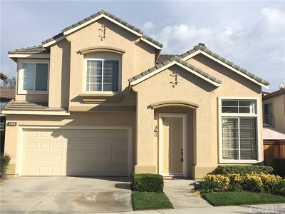Rental For Rent: 4066 Visions Drive