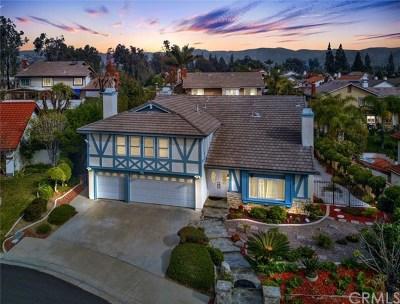 Yorba Linda Single Family Home For Sale: 5118 Via Samuel