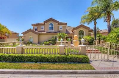 Yorba Linda Single Family Home For Sale: 27850 Mount Shasta Way