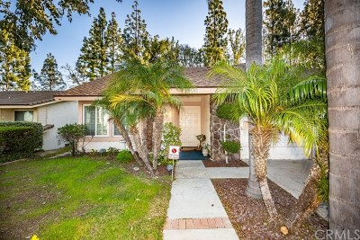 Anaheim Hills Single Family Home For Sale: 288 S Leandro Street