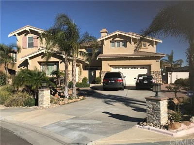 Riverside, Temecula Single Family Home For Sale: 16904 Ridge Cliff Drive