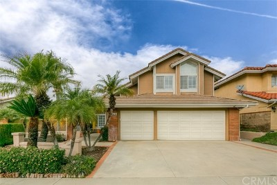 Orange County Single Family Home For Sale: 1751 Chantilly Lane