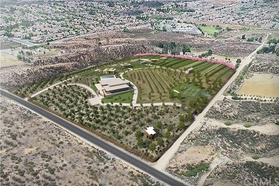 Wildomar Residential Lots & Land For Sale: 23633 Baxter Road