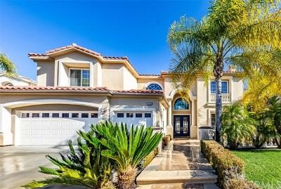 Yorba Linda Single Family Home For Sale: 17238 Blue Spruce Lane
