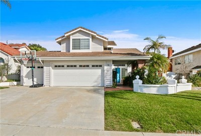 Laguna Niguel Single Family Home For Sale: 10 Thornapple