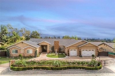 Fullerton Single Family Home For Sale: 710 Rodeo Road