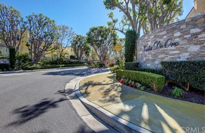 Aliso Viejo Condo/Townhouse For Sale: 40 Vista Del Cerro