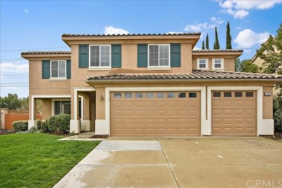 Murrieta Single Family Home For Sale: 24251 Broad Oak Street