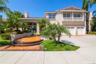 Anaheim Hills Single Family Home For Sale: 795 S Rock Garden Circle