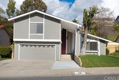 Diamond Bar Single Family Home For Sale: 718 Panhandle Drive