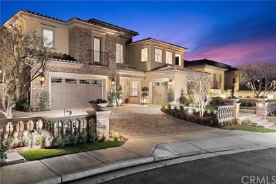 Yorba Linda Single Family Home For Sale: 4070 Princeton Place