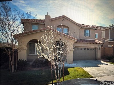 Lake Elsinore Single Family Home For Sale: 32346 Rock Rose Drive