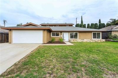 Anaheim Hills Rental For Rent: 136 N Lohrum Lane
