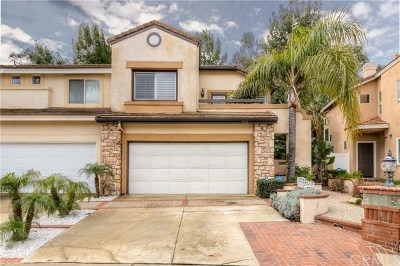 Anaheim Hills Single Family Home For Sale: 955 S Lone Pine Lane