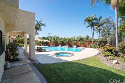 North Tustin Single Family Home For Sale: 12136 Skyline Drive