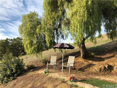 Lake Elsinore Residential Lots & Land For Sale: Ryan Avenue