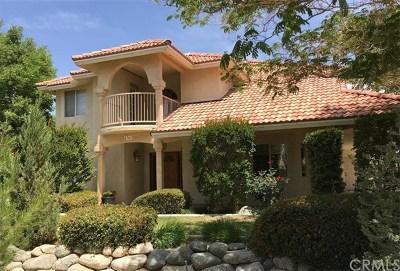 Rosamond Single Family Home For Sale: 4361 Stetson Avenue