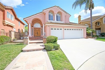 Chino Hills Single Family Home For Sale: 15181 Calle Verano