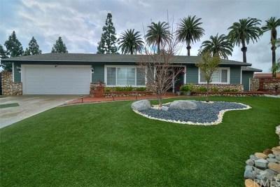 Placentia Single Family Home For Sale: 218 Rio Grande Avenue