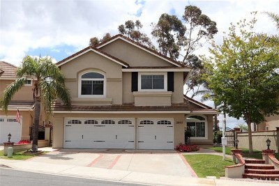 Trabuco Canyon Single Family Home For Sale: 28602 Camelback Road