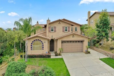 Chino Hills Single Family Home For Sale: 5107 Glenview Street