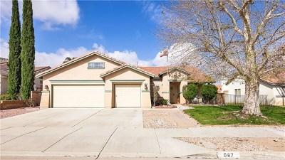 Hemet Single Family Home For Sale: 987 Corwin Place