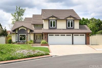 Yorba Linda Single Family Home For Sale: 4795 Via De La Roca
