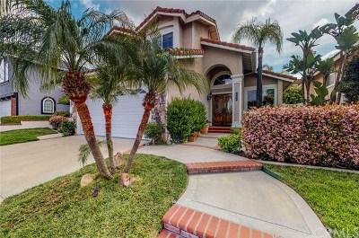 Yorba Linda Single Family Home For Sale: 5570 Avenida El Cid