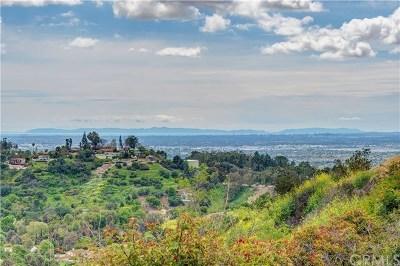 La Habra Heights Single Family Home For Sale: 2780 Casalero Drive